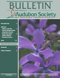 March 2008 Bulletin Cover