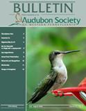 July 2008 Bulletin Cover